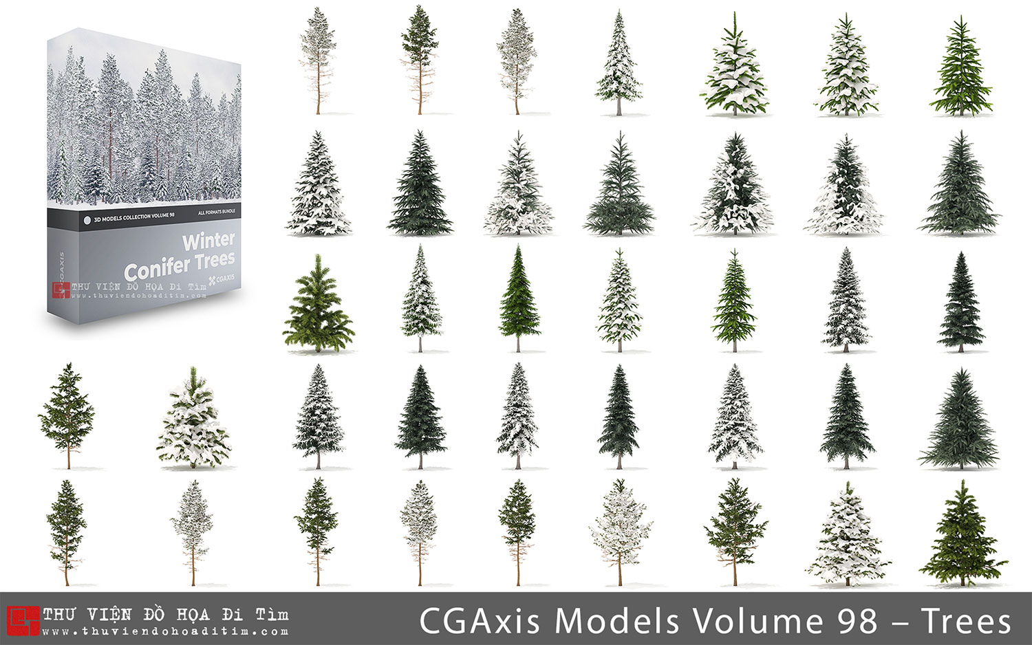 CGAxis Models Volume 98 – Winter Conifer Trees Collection_Ditim